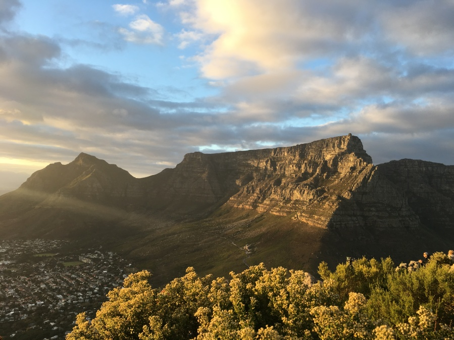 Lion's Head at Sunrise and a stroll through Kirstenbosch Gardens